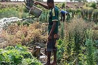 ZAMBIA, Chipata, farmer irrigates vegetable farm with can / SAMBIA, Chipata, COMACO Verarbeitung von Erdnuessen von Vertragsfarmern, GIZ Projekt Gruene Innovationszentren, Dorf Lupande, Kleinbauern, Feldfrucht Diversifizierung, Anbau und Bewaesserung von Gemuese