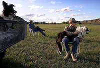 Joe Fritz and nephew Drew Kuntz look on as Joe's wife, Shannon, trains Border collies to help manage 240 sheep the Fritzes run on their North Dakota ranch to control an invasive flowering plant called leafy spurge. The Eurasian weed contains latex, which burns cows' <br /> mouths; enough spurge on pastureland will drive cattle away entirely. Luckily sheep enjoy eating spurge--in fact, they prefer it to grass, says Shannon Fritz. <br /> Leafy spurge can be catastrophic to grasslands for both economic and ecological reasons. It is estimated that the plant reduces the productivity of grazing land by 50 to 75 percent. It currently inhabits about three million acres of rangeland in the U.S.