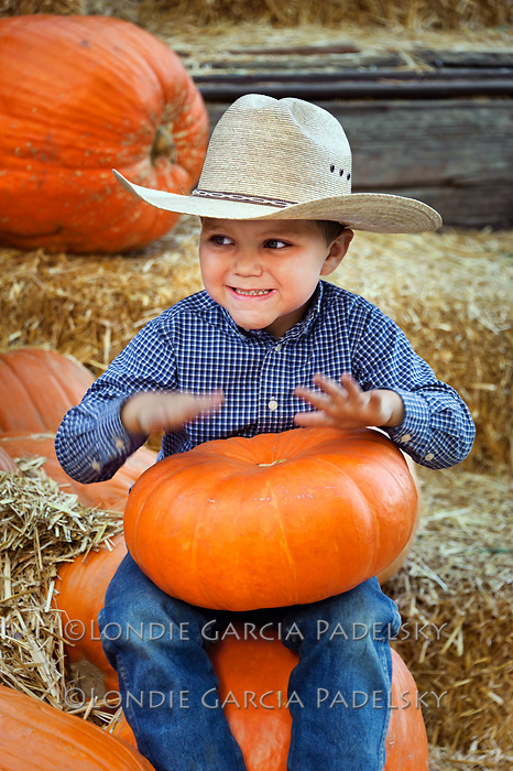 Pumpkin drum, Avila Valley Barn, San Luis Obispo County, California.(Evan)