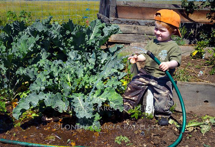 Caleb watering the garden. At the ranch in San Luis Obispo, California