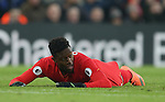 Divock Origi of Liverpool during the Premier League match at the Anfield Stadium, Liverpool. Picture date: November 26th, 2016. Pic Simon Bellis/Sportimage