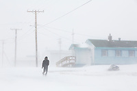 Man walks in a blizzard down the Native Inupiat village of Kaktovik, Arctic Alaska.