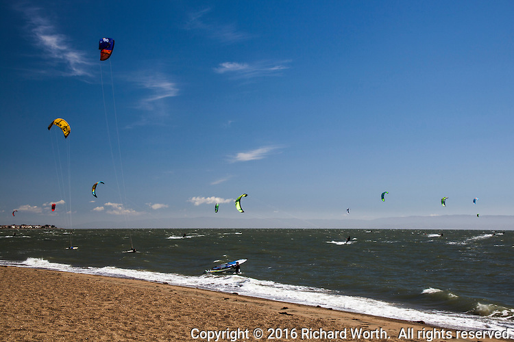 A dozen colorful kiteboarding kites fly, propelling their handlers along San Francisco Bay  at Crown Memorial State Beach in Alameda, California.