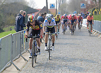Yves LAMPAERT (BEL/Deceuninck-Quick Step) up the Taaienberg<br /> <br /> 103rd Ronde van Vlaanderen 2019<br /> One day race from Antwerp to Oudenaarde (BEL/270km)<br /> <br /> ©kramon