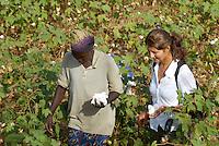 Burkina Faso , Anbau von fairtrade und Biobaumwolle auf Biohof von Farmer Nayaga Daniel im Dorf Dapury bei Ouagadougou, afrikanische Farmerin und europaeische Transfair Mitarbeiterin / Burkina Faso, organic and fairtrade cotton project, woman farmer and transfair employee in cotton field