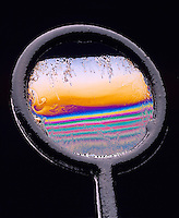 IRIDESCENCE: INTERFERENCE IN THIN FILM (SOAP)<br />