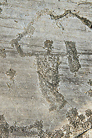 Petroglyph, rock carving, of a warrior with a sword and a square shield. Carved by the ancient Camuni people in the iron age between 1000-1600 BC. Rock no 24,  Foppi di Nadro, Riserva Naturale Incisioni Rupestri di Ceto, Cimbergo e Paspardo, Capo di Ponti, Valcamonica (Val Camonica), Lombardy plain, Italy