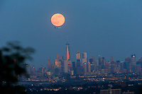 EAGLE ROCK, NJ - JUNE 09: The Strawberry Moon rises over lower Manhattan and next to One World Trade Center on June 06, 2017 in Montclair, New Jersey. Photo by VIEWpress/Eduardo MunozAlvarez