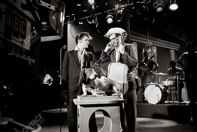 "The Steve Allen show,  with Steve Allen, performing the ""Hound Dog"" song. The stage prop of a hound dog has nothing to do with the lyrics of the song which was much raunchier and sexier, and that the Allen show attempted to clean up by adding this stage prop of a dog; Hudson Theatre, NBC television, New York, USA, July 1st, 1956"