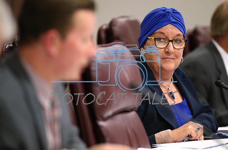 Nevada Sen. Debbie Smith, D-Reno, listens to Sen. Ben Kieckhefer, R-Reno, during a hearing at the Legislative Building in Carson City, Nev., on Thursday, April 30, 2015. <br /> Photo by Cathleen Allison