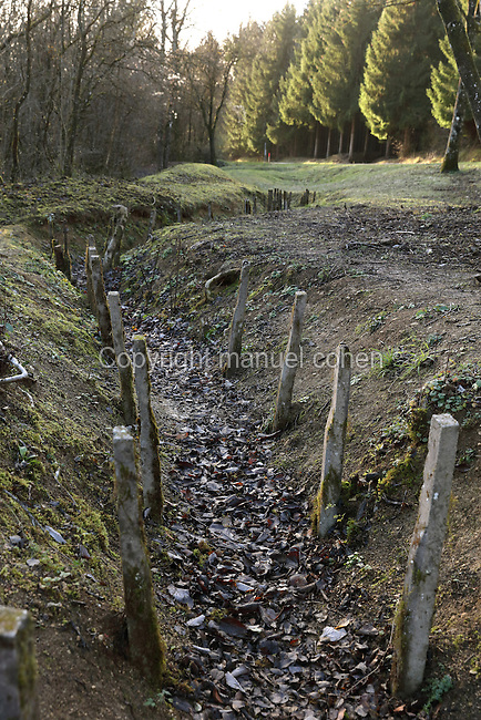The Boyau de Londres, a communications trench dug in 1917 to link the Fort de Douaumont to the rear lines, during the Battle of Verdun in World War One, Verdun, Meuse, Lorraine, France. Picture by Manuel Cohen