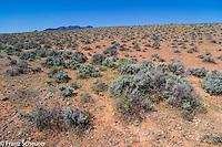 Flinders Ranges.  Sth Australia