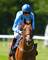Halliford Road ridden by George Wood goes down to the start of The Penang Turf Club Malaysia Novice Stakes (Plus 10 Race) (Class 4 during Afternoon Racing at Salisbury Racecourse on 17th May 2018