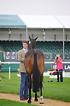 William Fox-Pitt during the First Vets Inspection at the 2014 Land Rover Burghley Horse Trials held at Burghley House, Stamford, Lincolnshire