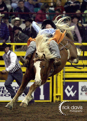 1/18/09--Photo by Rick Davis--PRCA cowboy Josh Luger of Fort Yates, North Dakota scored a 78 point bareback ride on the bronc Multichem Showdance PRCA cowboy Paul Jones of Elko, Nevada scored an 83 point ride on the Calgary bronc Cosmic Wake during action at the 103rd National Western Stock Show and Rodeo in Denver, Colorado.