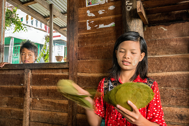 Burmese teenage girl counts dry cheroots leaves used for packaging. The cigar-making workshop is located in a tradional wooden-house on stilts at Inle Lake.                                             Through the window, a young boy watches her working.