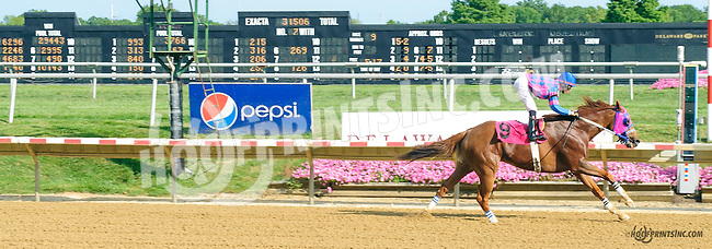 Beau Who winning at Delaware Park on 8/8/15