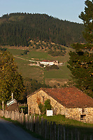 Europe/Espagne/Pays Basque/Guipuscoa/Goierri/Env de Lazkao: Lacaumendi, paysage de montagne