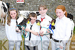 FAIR: Amie Dillon, Michael Kirby (Duagh), Jana Finucane (Listowel) and Tamara Kirby (Duagh) looking at the calves at the Kingdom County Fair at Ballybeggan on Sunday.   Copyright Kerry's Eye 2008