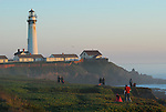 Visitors and Pigeon Point lighthouse