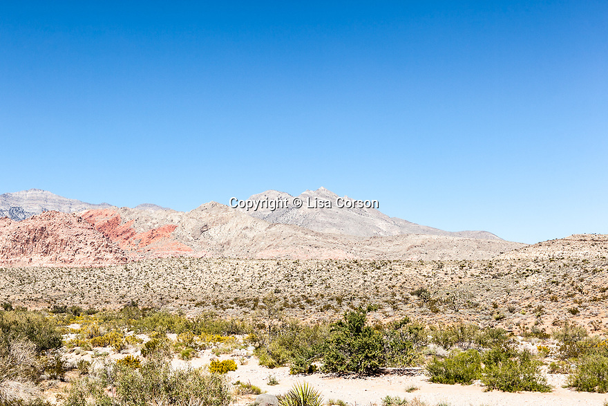 Red Rock Canyon National Conservation Area, west of Las Vegas, NV.