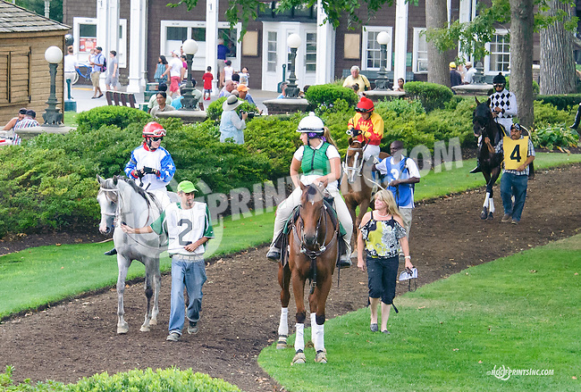 Charich before The Buzz Brauninger Arabian Distaff Handicap (grade 1) at Delaware Park on 9/5/15