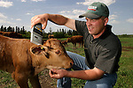 Farmer Markus Weber demonstrates how a Psion hand held scanner can retrieve ear tag information, for the Viewtrak data base system, on his farm near Camrose, on May 30, 2003. John Ulan/The Edmonton Journal
