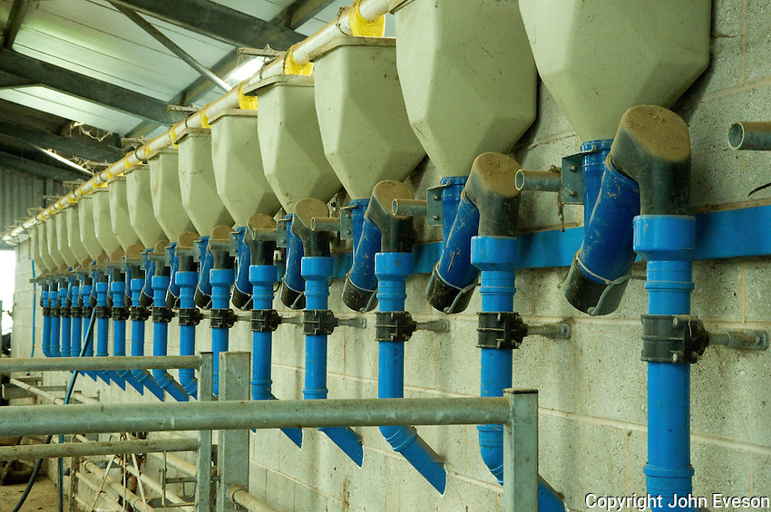 Milking parlour feeders.