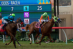 DEL MAR, CA  SEPTEMBER 2: #8 King of Speed, ridden by Gary Stevens, takes on #1 Hartel, ridden by Flavien Prat, in the stretch of the Del Mar Juvenile Turf on September 2, 2018 at Del Mar Thoroughbred Club in Del Mar, CA. (Photo by Casey Phillips/Eclipse Sportswire/Getty ImagesGetty Images