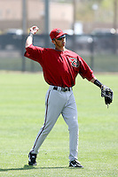 David Nick, Arizona Diamondbacks 2010 minor league spring training..Photo by:  Bill Mitchell/Four Seam Images.