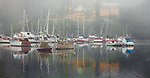 Vashon Island, Washington<br /> Boats at the Burton Marina in Quartermaster Harbor in morning fog