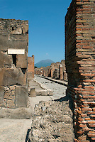 At the time Mount Vesuvius erupted in 79AD, Pompeii was a thriving wealthy city. Rediscovered in 1748, the excavated town offers a snapshot of Roman life in the 1st century. Excavations of the site have been ongoing for a few hundred years. In 1995, the area around Vesuvius was formed into the Parco Nazionale del Vesuvio, the National Park of Vesuvius.