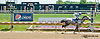 Sweet Maxine winning at Delaware Park on 6/1/13