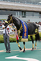 Horse Racing : Sirius Stakes 2016