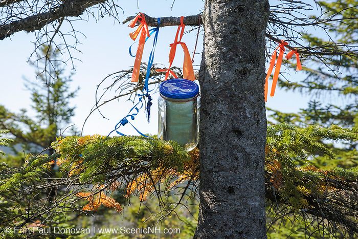 Summit canister on the summit of Whitewall Mountain in the White Mountains of New Hampshire. This canister marks the highest point on the mountain, and hikers sign the register that is inside the canister. These canisters vary from plastic bottles to glass mason jars tied to trees to PVC pipe bolted to the tree. And sometimes the site is marked with flagging.