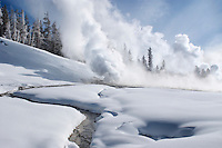 Geysers emit steam from vents in Yellowstone National Park on a cold January mornin