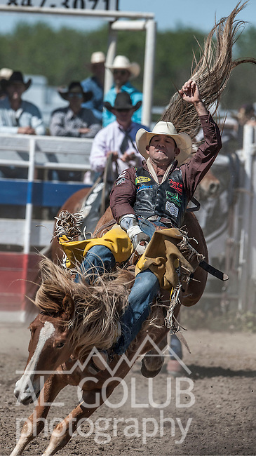 Bobby Mote from Culver, Oregon scores 78 points in the Bareback Ridding event on Sunday April 14 20013 at the 62nd Annual Oakdale Rodeo.