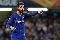 Cess Fabregas of Chelsea during Chelsea vs MOL Vidi, UEFA Europa League Football at Stamford Bridge on 4th October 2018