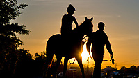 BALTIMORE, MD - MAY 17:  A horses heads from the track as preparations ramp up for the Preakness Stakes this Saturday at Pimlico Race Course on May 17, 2017 in Baltimore, Maryland.(Photo by Scott Serio/Eclipse Sportswire/Getty Images)