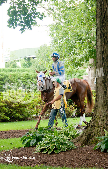 Daul Exhaust before The Hockessin Stakes at Delaware Park on 7/4/13
