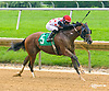 King of Night winning at Delaware Park on 7/17/17