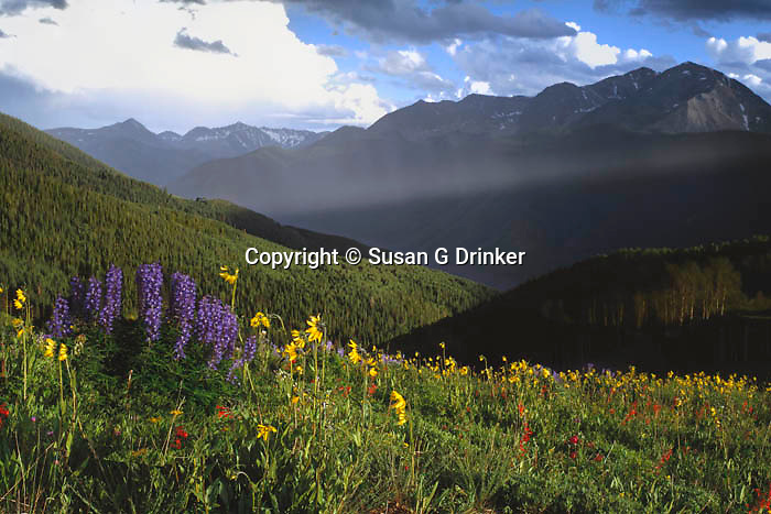 Little Annie Basin, Aspen, CO