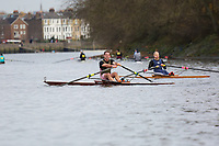 Scullers Head 2019