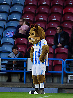 Terry the Huddersfield Town mascot watches the game<br /> <br /> Photographer Andrew Vaughan/CameraSport<br /> <br /> The Carabao Cup First Round - Huddersfield Town v Lincoln City - Tuesday 13th August 2019 - John Smith's Stadium - Huddersfield<br />  <br /> World Copyright © 2019 CameraSport. All rights reserved. 43 Linden Ave. Countesthorpe. Leicester. England. LE8 5PG - Tel: +44 (0) 116 277 4147 - admin@camerasport.com - www.camerasport.com