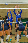 1 November 2015: Yeshiva University Maccabee Setter, Defensive Specialist, and team co-Captain Aliza Muller (left), a Senior from Los Angeles, CA, and Middle Blocker Gavriela Colton, a Junior from Teaneck, NJ, block against the Saint Joseph College Bears at SUNY Old Westbury in Old Westbury, NY. The Bears shut out the Maccabees 3-0 in NCAA women's volleyball, Skyline Conference play. Mandatory Credit: Ed Wolfstein Photo *** RAW (NEF) Image File Available ***