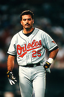 Rafael Palmeiro of the Baltimore Orioles at Anaheim Stadium in Anaheim,California during the 1996 season. (Larry Goren/Four Seam Images)