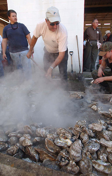 News///Mill Creek Deese///Volunteer A.J.Deese shovels oysters into a bucket for delivery to the hungry oyster eaters at the 32nd annual Mill Creek Oyster Festival. PHOTO BY CHUCK BECKLEY