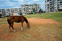 "A horse eats grass in the open space among the large apartment blocks in Alamar, a public housing suburb of Havana, Cuba, 9 February 2011. The Cuban economic transformation (after the revolution in 1959) has changed the housing status in Cuba from a consumer commodity into a social right. In 1970s, to overcome the serious housing shortage, the Cuban state took over the Soviet Union concept of social housing. Using prefabricated panel factories, donated to Cuba by Soviets, huge public housing complexes have risen in the outskirts of Cuban towns. Although these mass housing settlements provided habitation to many families, they often lack infrastructure, culture, shops, services and well-maintained public spaces. Many local residents have no feeling of belonging and inspite of living on a tropical island, they claim to be ""living in Siberia""."