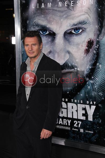 Liam Neeson<br /> at &quot;The Grey&quot; Los Angeles Premiere, Regal Cinemas, Los Angeles, CA 01-11-12<br /> David Edwards/DailyCeleb.com 818-249-4998