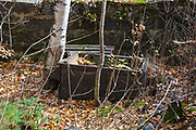 Remnants of a large safe in the foundation of the company story in the abandoned village of Livermore during the autumn months. This was a logging village in the late 19th and early 20th centuries along the Sawyer River Logging Railroad in Livermore, New Hampshire USA. The town and railroad were owned by the Saunders family.